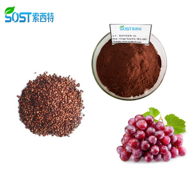 SOST Hot Selling Organic Grape Seed Extract Powder Proanthocyanin 95%