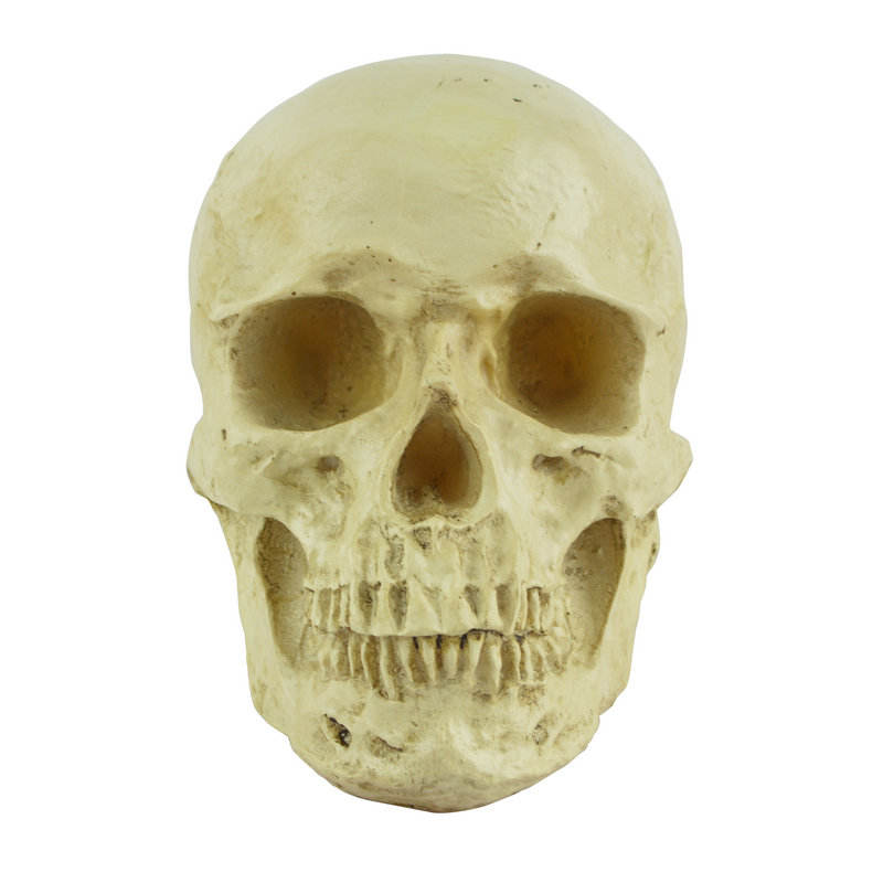 Halloween scary ghost head decoration items resin skull skull model April fool's day trick scary children toys
