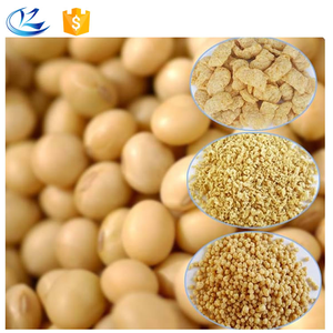 Bulk supply textured soya protein/textured vegetable soy protein