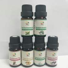 100% Pure and Natural Essential Oil Pine Oil For Fragrance and Detergent Application