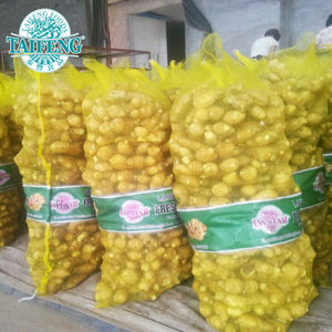 Chinese Ginger Supplier Supply New Crop Fresh Ginger