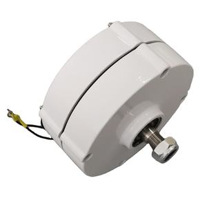 750RPM 100W AC Permanent Magnet Generator For Wind Turbine