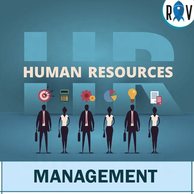 Human Resource Management System Design and Development