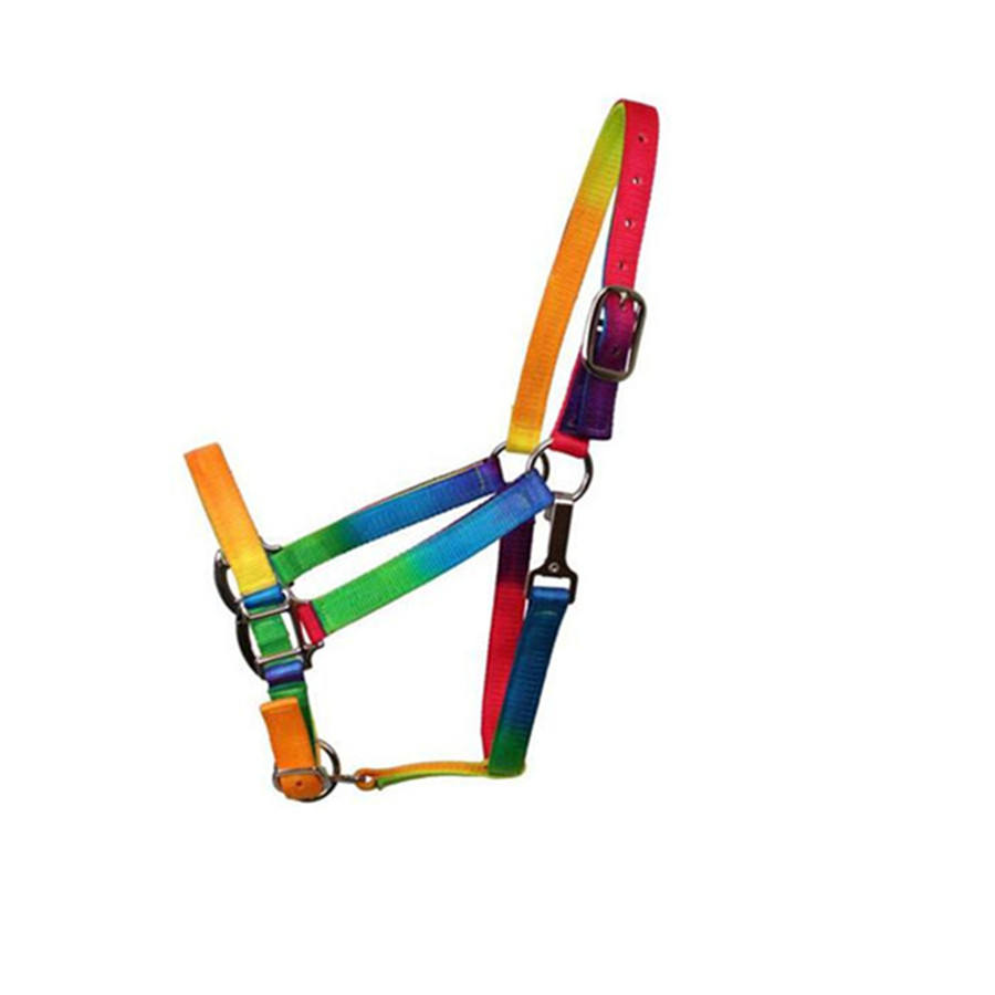 Equestrian Equipment Webbing Rainbow Horse Halter with hardware