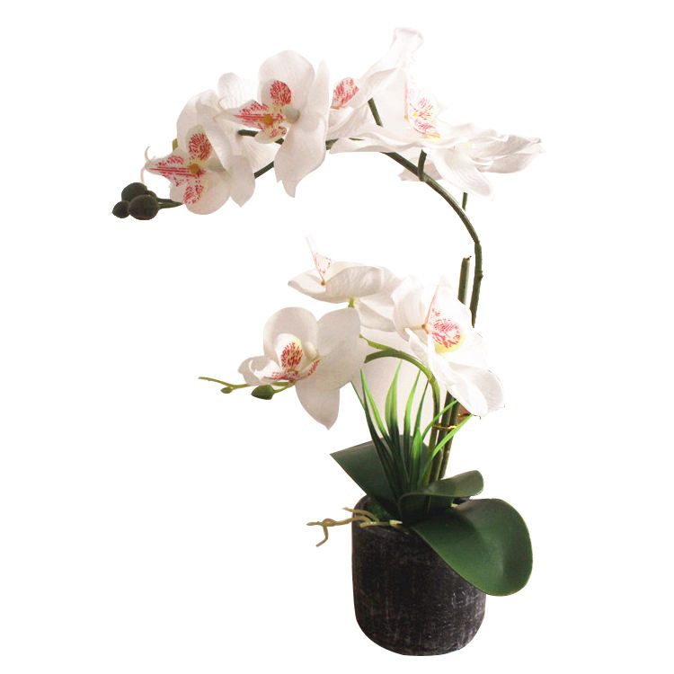 Quality High quality Silk Artificial White vanda Orchid plants flowers in Cement Vase for Indoor Decoration