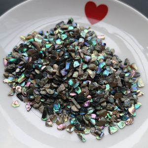 XUNBEI Natural Crushed Abalone Shell Mother of Pearl shell for DIY Jewelry Mother Pearl Scraps for False nails