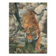 Handmade Framed Canvas Tiger Oil Painting Animal Picture from China