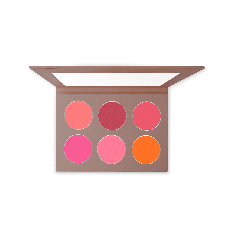 Makeup Blush Cosmetic Great Pigment Highlighting Blush Palette Private Label