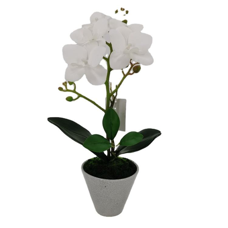 Wholesale White Phalaenopsis Artificial White Artificial Orchid Plants Decorative Potted Orchid