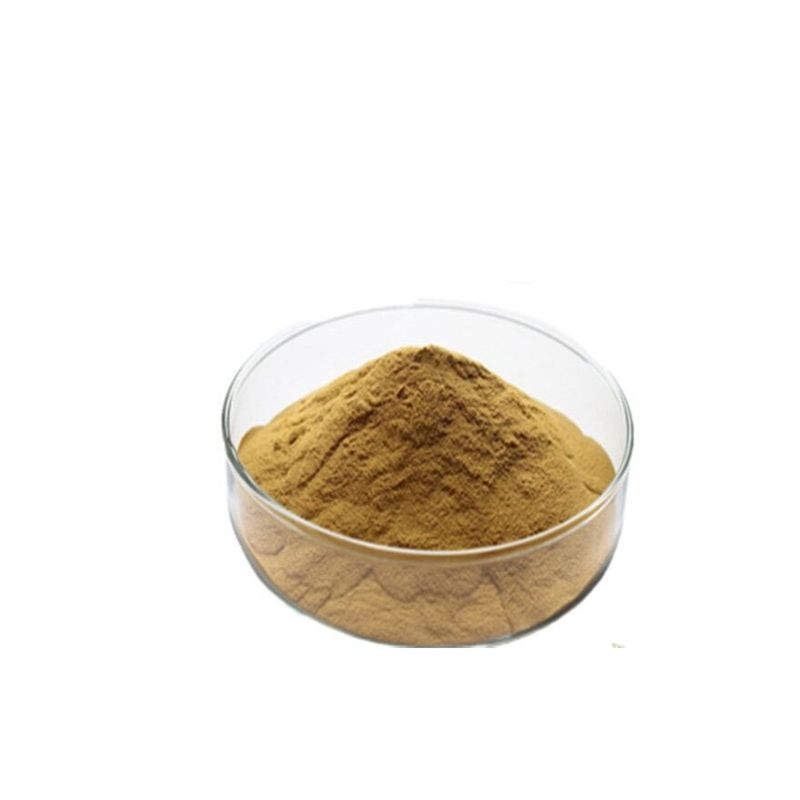 factory price 100% natural Passiflora incarnata Extract