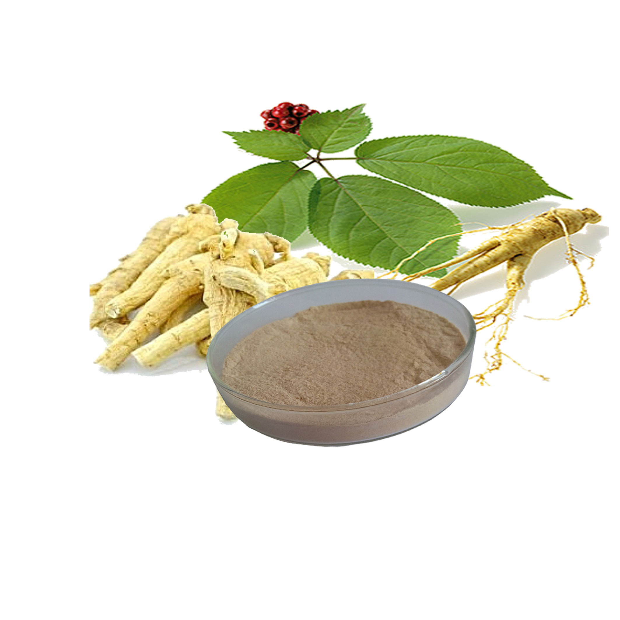 6 Year Old Gold Ginsenoside Rg Panax Ginseng Root Extract