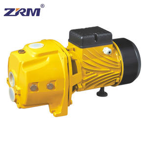 75m Head 1.5Hp 1.1Kw Water Supply Garden Pond Transfer Self Priming Pump For Home