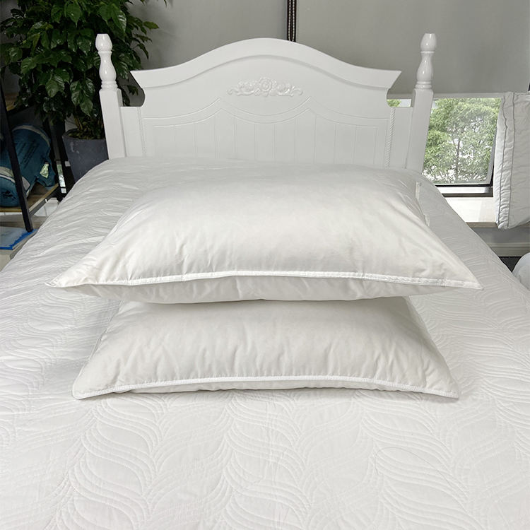 2 Pack Queen Size White Goose Feather Down Pillow Cotton Cover with Fashionable Piping