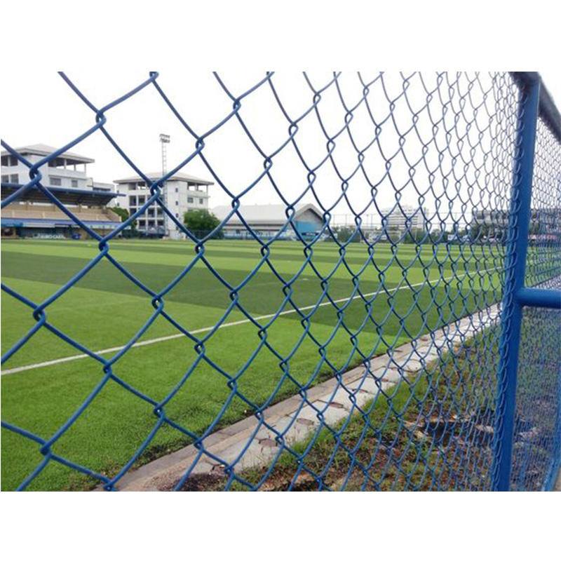 Dark Green Coated Chain Link Fence for Playground