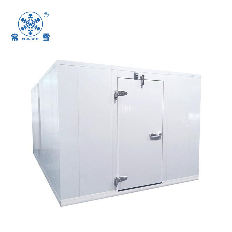 large air blast freezer/container cold room for vegetable/meat/flowers