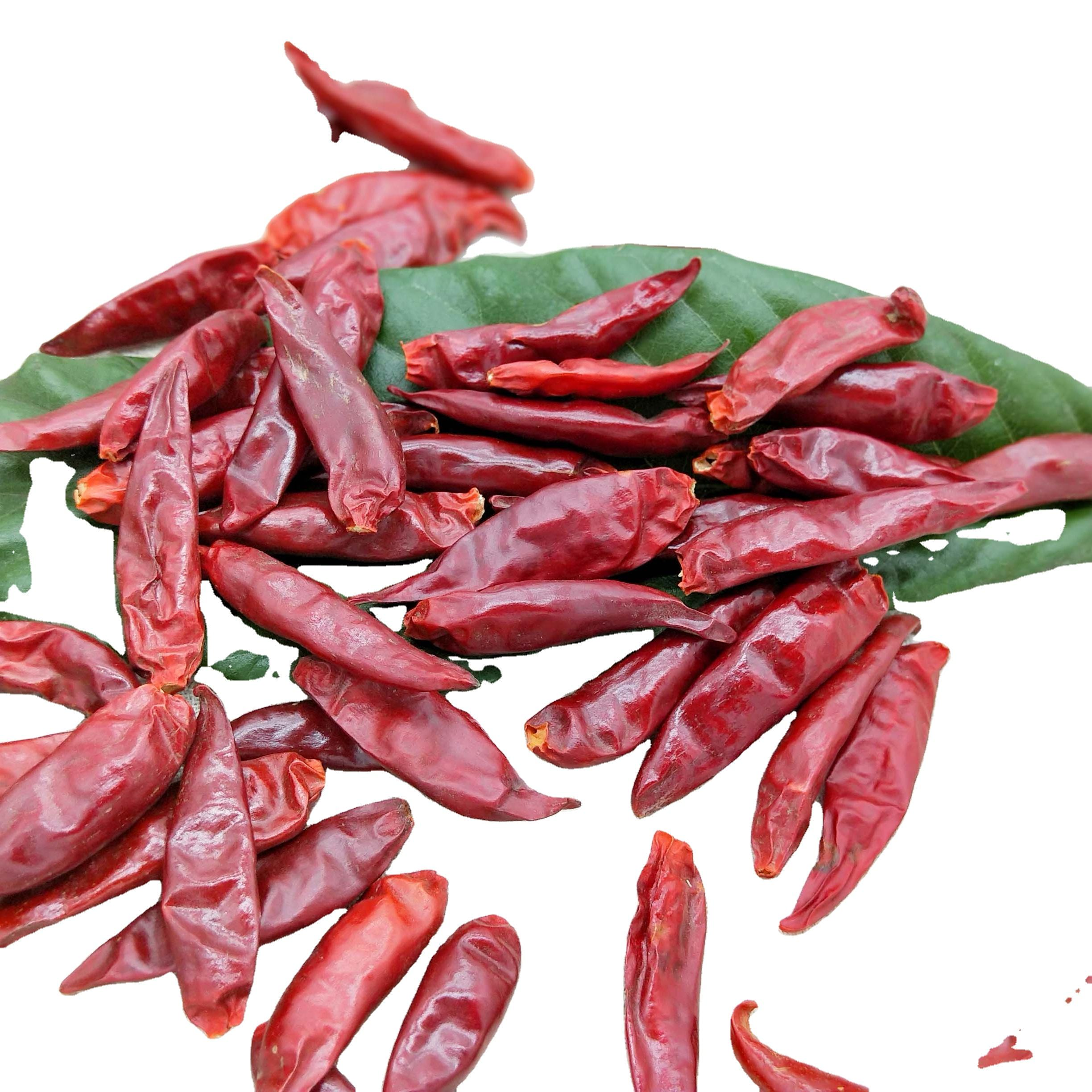 Wholesale bulk superior grade dry sweet chili pepper hot pepper export