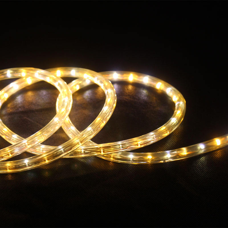 IP65 Led Rope Light Fairy Light Decoratie Kerstverlichting <span class=keywords><strong>Koper</strong></span> Voor Indoor Factory Direct Hot Verkoop 2020 Waterdicht Lichtgevende