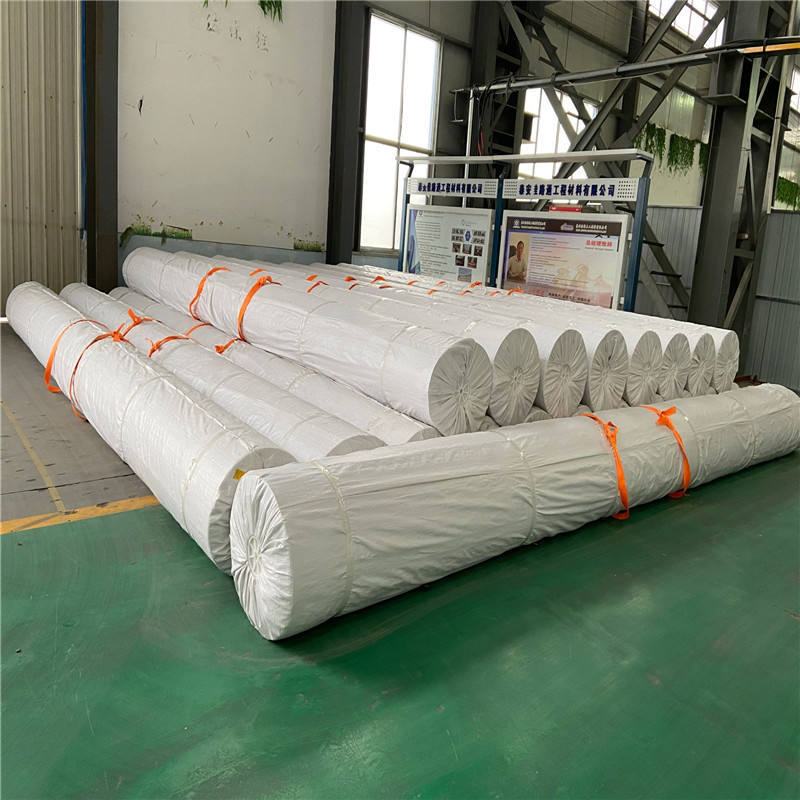 Geomembrane HDPE 03 Mm Roll