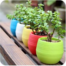 Eco-friendly Flowerpot Gardening Round Mini Plastic Flower Pots