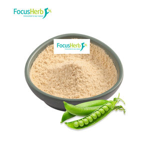 FocusHerb Health Care Products Bulk Vegan Protein Pea Protein Powder