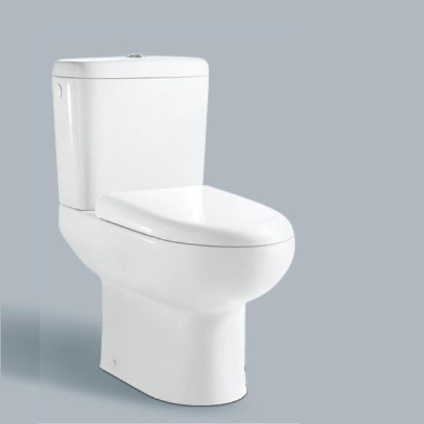 Elongated Toilet Bowl Shape and washdown Flushing Flushing Method upc toilet seat