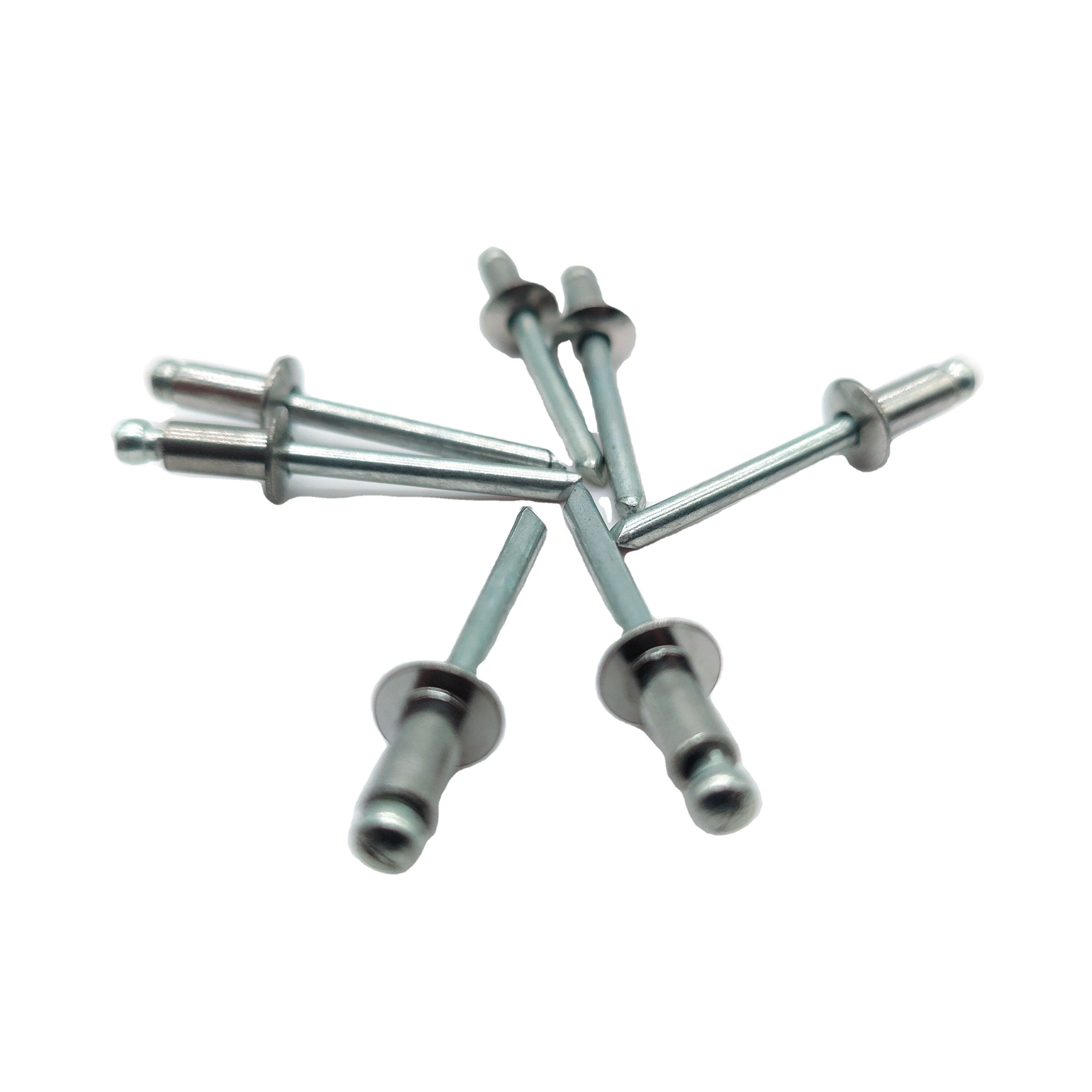 Blind Rivet Stainless Steel Self-Plugging Open End Fastener Nails Pop Rivets Core Pulling Rivets Factory Customized Round head