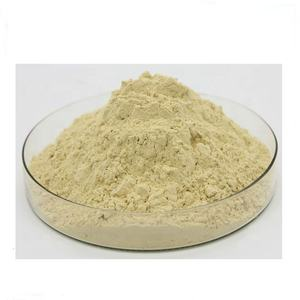 GMP Korean Red Ginseng Extract to Improving Achroacyte Conversion