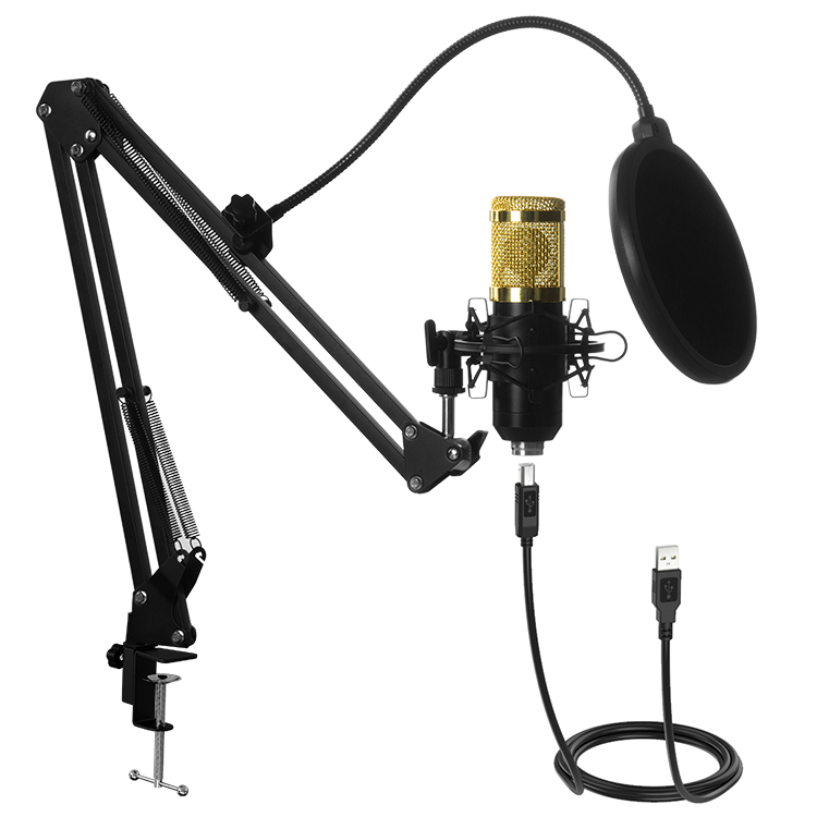 Top Quality Condenser Kit Studio Microphone Sound Recording for Live Stream