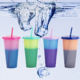 700ml Color Changing Mug Plastic Color Changing Tumbler Cheap Plastic Tumbler with Straw