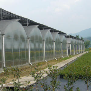 small industrial greenhouse from China
