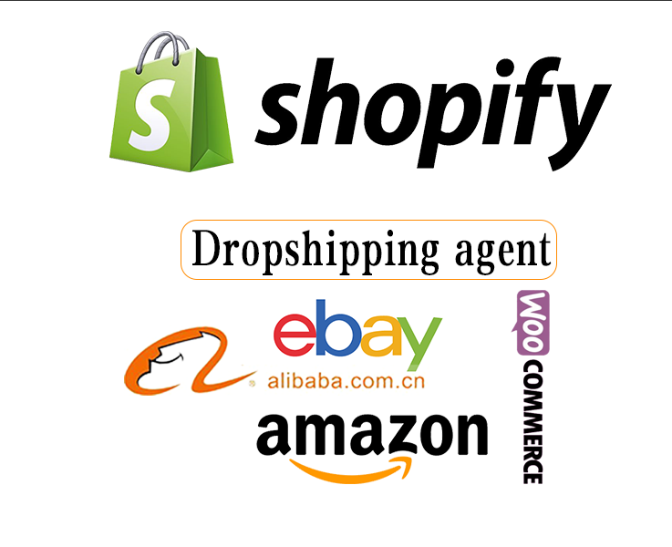Professional Dropshipping Agent Shopify Fulfillment Shopify Service From Shenzhen To USA And France