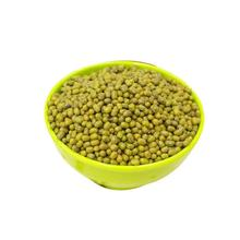 High quality Sprouing Green Mung Beans moong dal