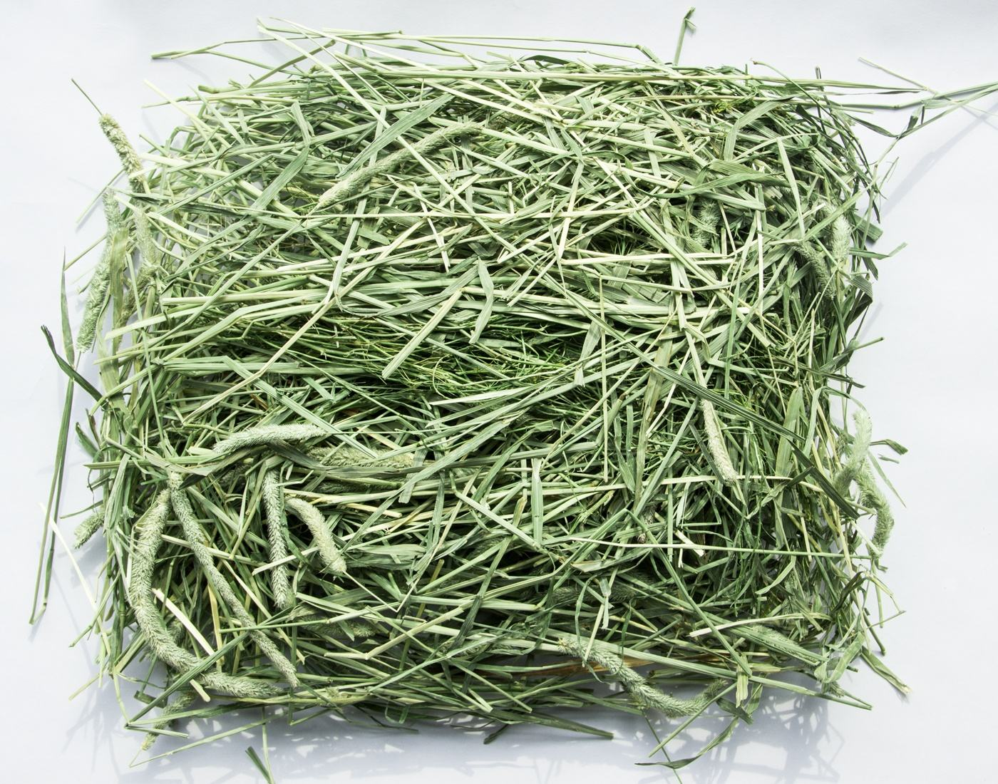 Competitive price Alfafa Hay for Animal Feeding Stuff high vitamin Timothy hay food for wholesale