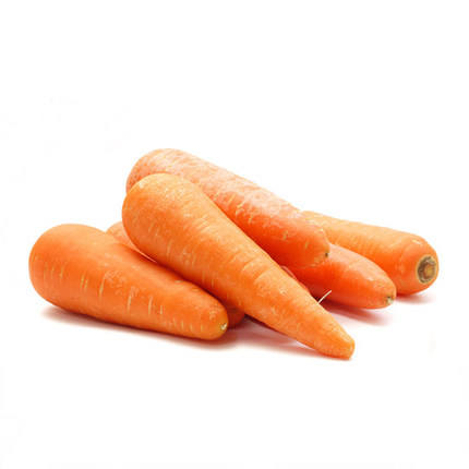 Hot Selling chinese New Crop sell sell fresh carrot