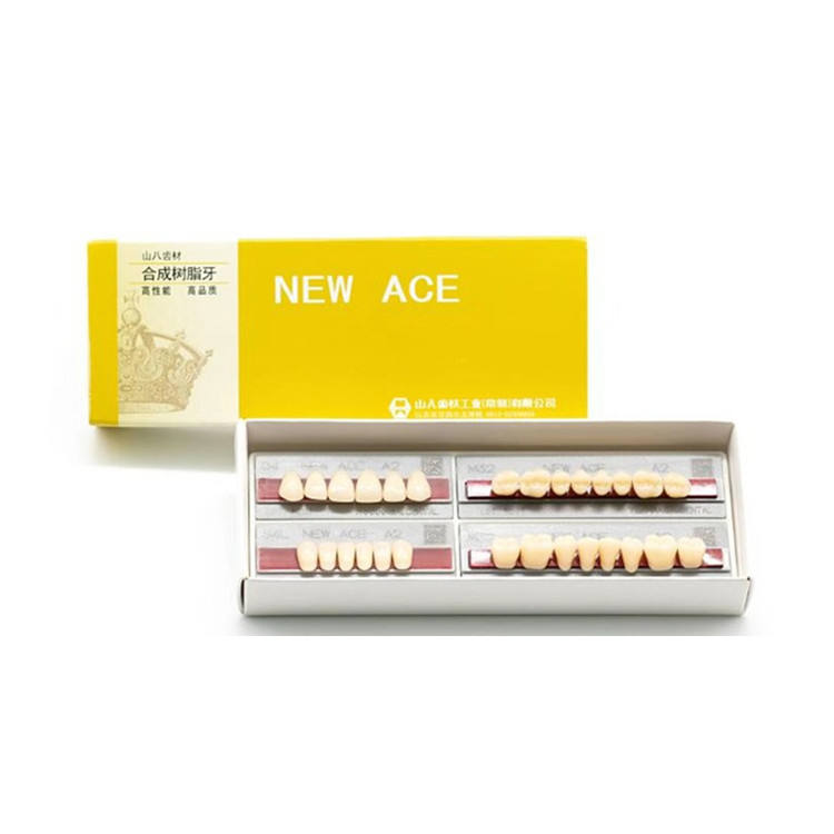 Acrylic Denture Teeth False Teeth