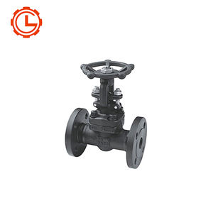 China Supply Z41H DN15-DN600 Stainless Steel Flanged Gate Valve