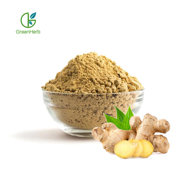 Factory Supply Natural Ginger Root Extract Powder