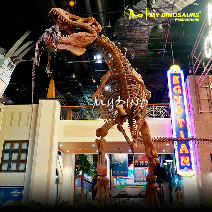 MY Dino DS125 Dinosaurs Extinction Fossil and Skeleton of Dinosaurs T-rex