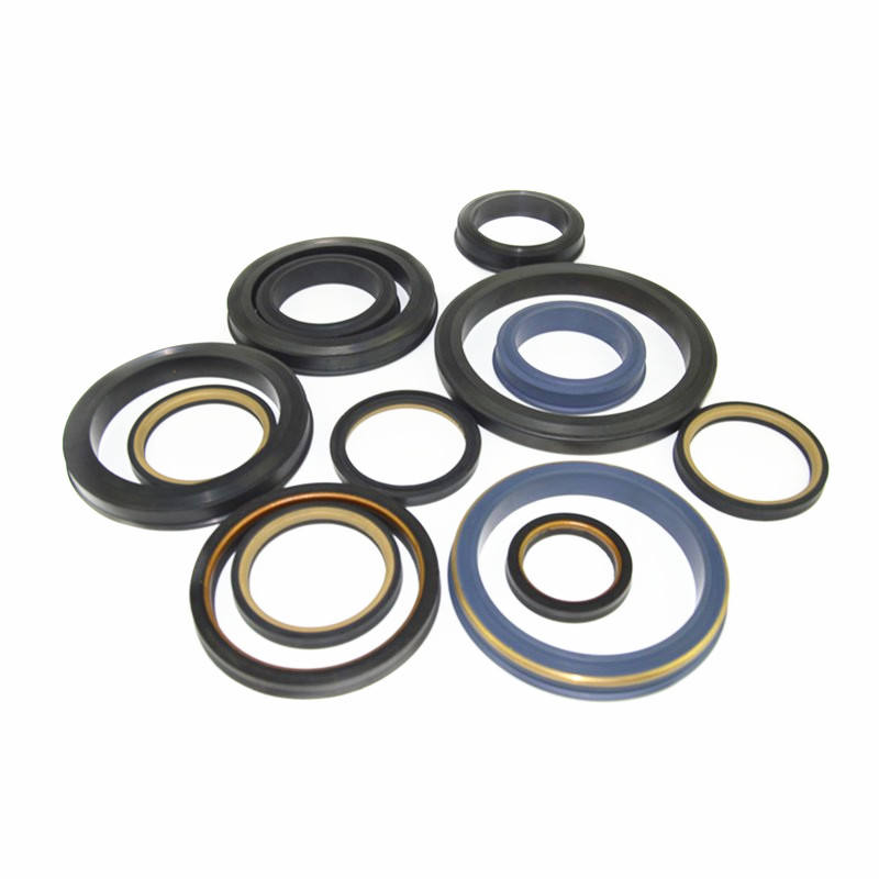 SHQN OEM China Manufacturer Made API Standard Hammer Union Seals Lip Seals stainless steel backed weco seal