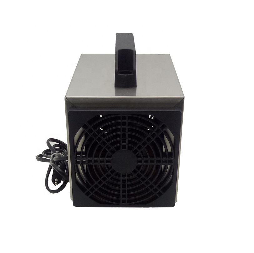 Portable Air Purifier Negative Ion Hepa Filter Ozone Disinfection Machine 10g/h Ozone Generator