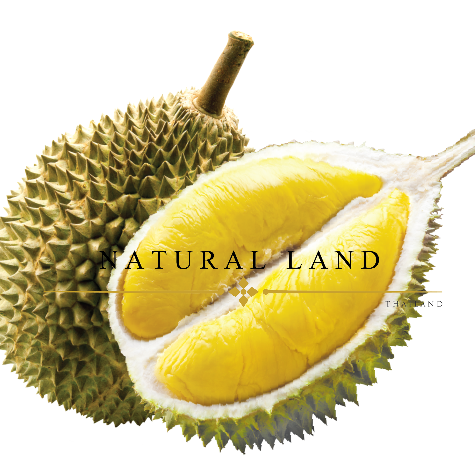 HIGH QUALITY FROZEN DURIAN MONTHONG THE GREATEST TASTE AND PREMIUM QUALITY