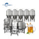 Small model 500l brew system brewery equipment beer fermenting turnkey plant for bar