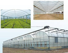 High Quality Greenhouse Po Film Multi Span Agricultural Pep Film Greenhouse