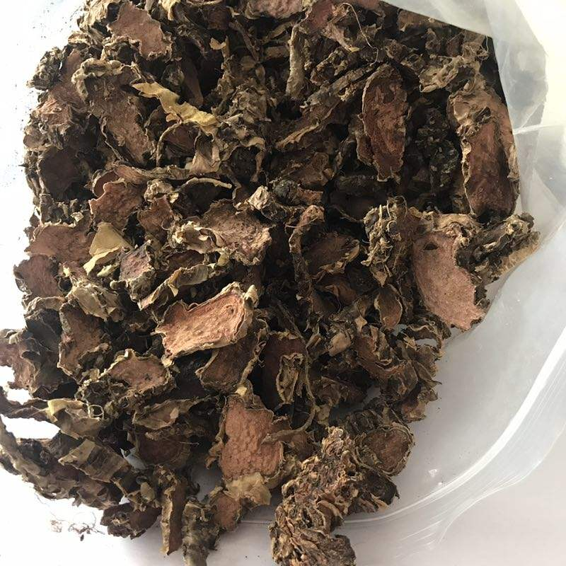 1028 Hong jing tian Top Selling Chinese Herbal Medicine Rhodiola Rosea Root