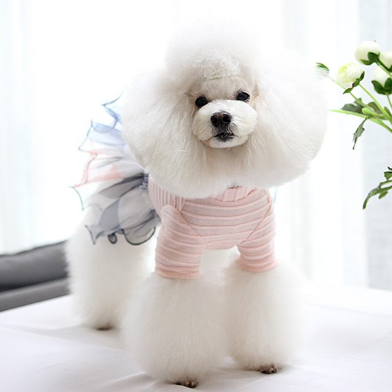 Pet apparel dog pets clothes Luxurious lace candy-colored pet dress for small female dogs fashion design cat dog dress