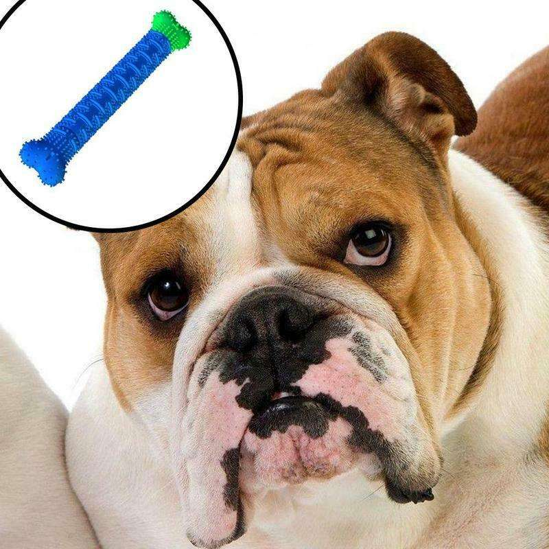 Molar Tooth Cleaning Brushing Stick Silicone Dog Chewing Bone Toys Pet Doggy Puppy