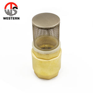 Chinese Factory Forging Brass sanitary check valve