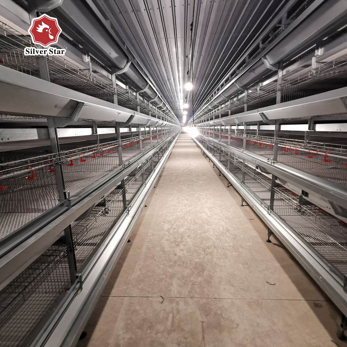 Poultry breeding equipment H type chicken battery cages laying hens