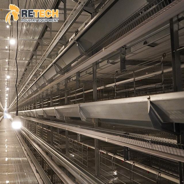 Complete Egg Chicken Cage Manufacturer H Type Poultry Battery Cages for Layer Chickens