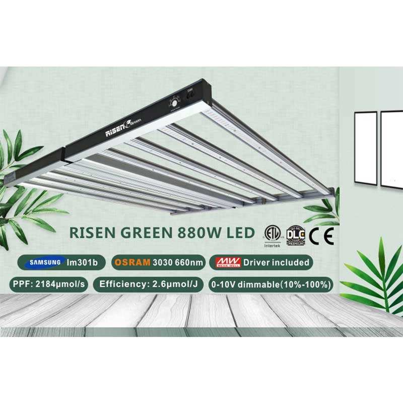 mushroom hydro gavita pro 1700e professional wideband integrated 880W led grow light